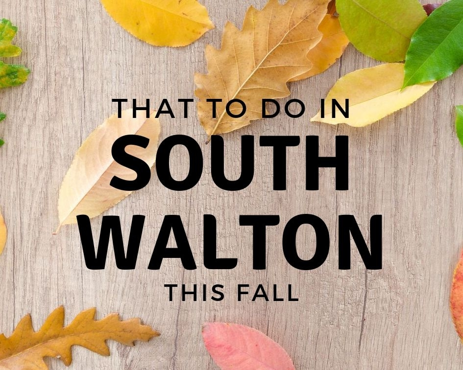 What to do South Walton This Fall